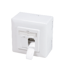 Flush- and surface-mounted boxes